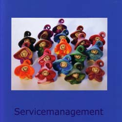 0_cover_Servicemanagement_300dpi-standard-250